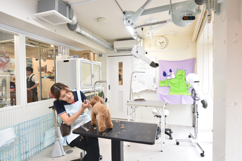 かつての「番犬」は「家族」に。人間顔負けに進化したペット向けサービス