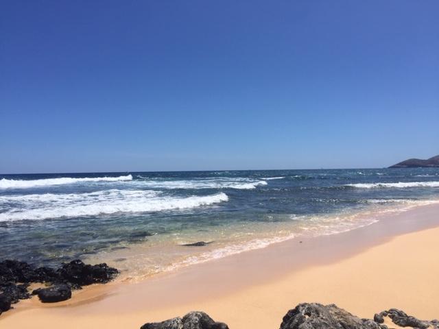 Aloha from サンディービーチ